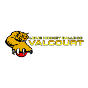 Ligue Hockey Balle Valcourt